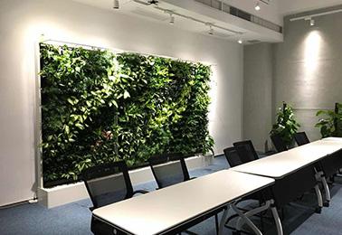 立体绿化对改善城市生态的作用