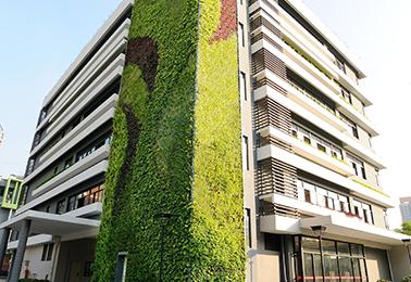 建筑及空间立体绿化对于改善城市环境的作用