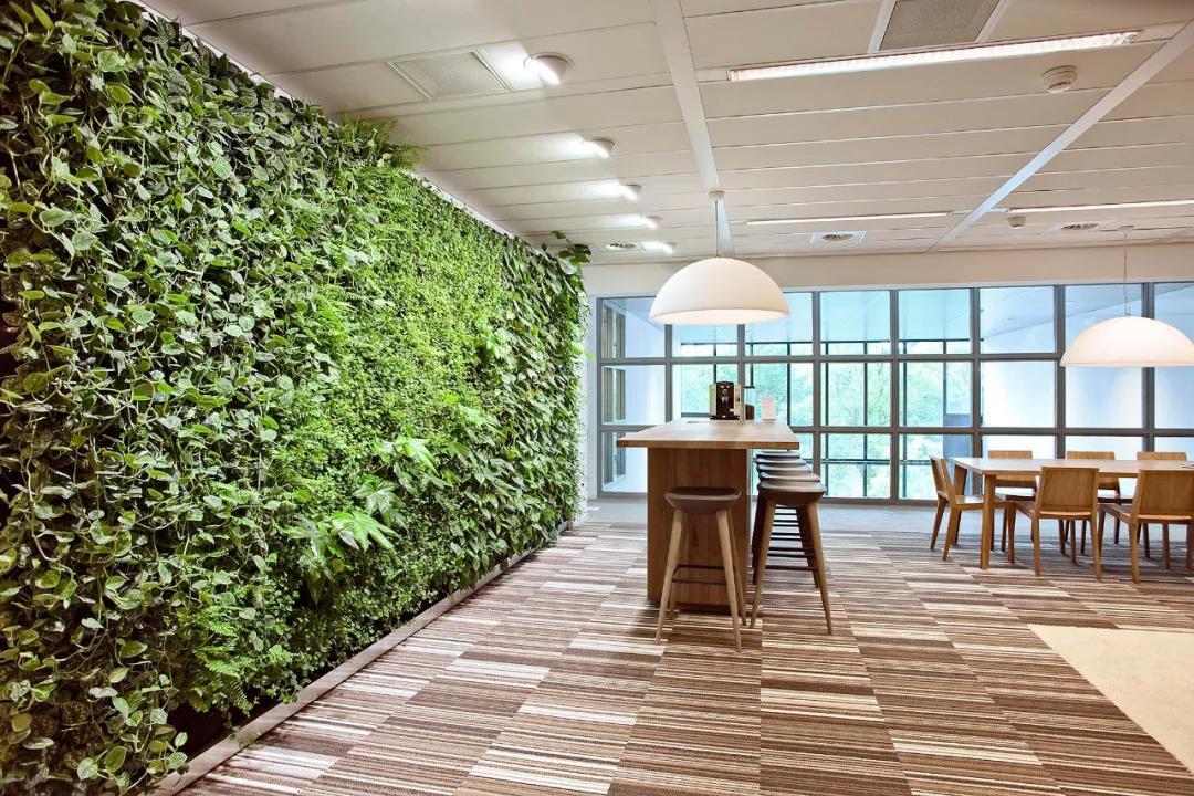 立体景观植物绿墙在可持续性上依赖于哪些基础